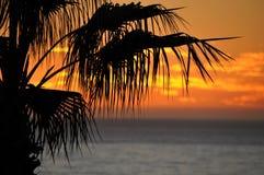 Zmierzch nad Malibu Pacyficznego oceanu linią brzegową Obrazy Stock