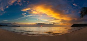 Zmierzch nad oceanem z tropikalną palmą obrazy royalty free
