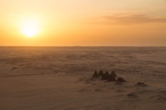 Zmierzch nad ostrosłupami przy Jebel Barkal obrazy stock