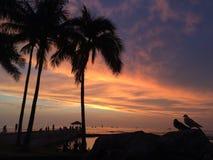 Zmierzch nad Pacyfik widok na ocean od Waikiki ściany w Honolulu na Oahu wyspie, Hawaje Obraz Stock