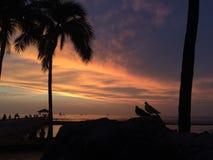 Zmierzch nad Pacyfik widok na ocean od Waikiki ściany w Honolulu na Oahu wyspie, Hawaje Obrazy Stock