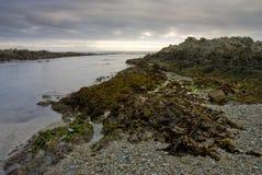 Zmierzch nad skalistą plażą i morzem obraz stock