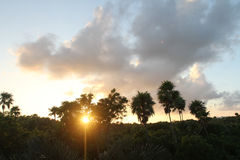 Zmierzch nad tropikalną dżunglą zdjęcia stock