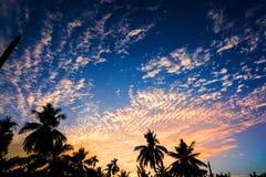 Zmierzch & niebieskie niebo obrazy royalty free