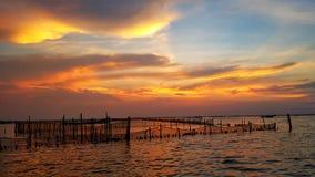 Zmierzch panoramy widok przy Namorzynowym Bekasi zdjęcie royalty free