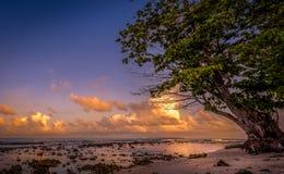 Zmierzch pogodna plaża Zdjęcia Stock