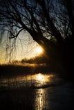 Zmierzch przy Jeziornym Balaton w zima czasie, Węgry Fotografia Stock