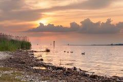 Zmierzch przy jeziornym Bodensee Zdjęcie Royalty Free