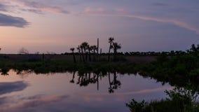 Zmierzch przy Merritt wyspy Krajowym rezerwatem dzikiej przyrody, Floryda Zdjęcia Stock