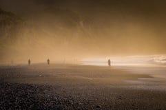 Zmierzch przy mglistą otoczak plażą w Nowa Zelandia Zdjęcie Stock