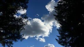 Zmierzch Timelapse z chmurami w Oregon zbiory wideo
