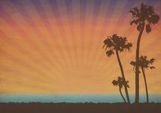 zmierzch tropikalny ilustracja wektor
