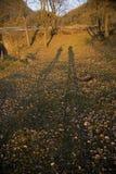 Zmierzch w Collsacabra Zdjęcie Royalty Free