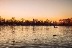 Zmierzch w emerytura parku, Madryt fotografia stock