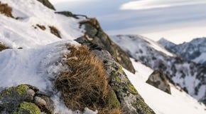 Zmierzch w górach Zdjęcie Stock