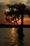 Zmierzch w Jeziornym Martin Luizjana zdjęcia stock