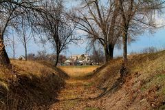 Zmierzch w lesie, droga w lesie zdjęcie royalty free