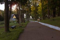 Zmierzch w parku Zdjęcie Royalty Free