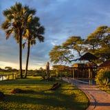 Zmierzch w południe - afrykanina Etosha park na brzeg jezioro wewnątrz Zdjęcie Stock