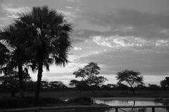 Zmierzch w południe - afrykanina Etosha park na brzeg jezioro wewnątrz Zdjęcia Stock