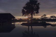 Zmierzch w południe - afrykanina Etosha park na brzeg jezioro wewnątrz Fotografia Stock
