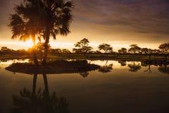 Zmierzch w południe - afrykanina Etosha park na brzeg jezioro wewnątrz Zdjęcie Royalty Free
