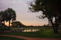 Zmierzch w południe - afrykanina Etosha park na brzeg jezioro wewnątrz Obrazy Stock