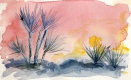Zmierzch w pustyni Obrazy Stock