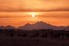 Zmierzch w pustyni - Sahara góry Zdjęcia Royalty Free