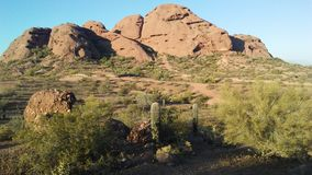 Zmierzch w pustyni z rewolucjonistek skałami w Phoenix, Arizona Zdjęcia Stock