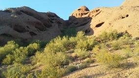 Zmierzch w pustyni z rewolucjonistek skałami w Phoenix, Arizona Zdjęcie Royalty Free