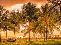 Zmierzch w tropikalnej wyspie, palmach i lokalnej łodzi w Zachodnim Sumbawa, Zdjęcie Royalty Free