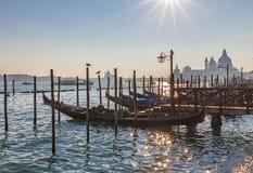 zmierzch Wenecji Gondole przy zmierzchem z kopułą w tle Zdjęcia Stock