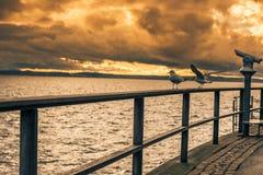 Zmierzch zobaczył od Bodensee jeziora boardwalk Obrazy Stock
