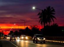 Zmierzchu światło za kokosowymi drzewami i drogą zdjęcie royalty free