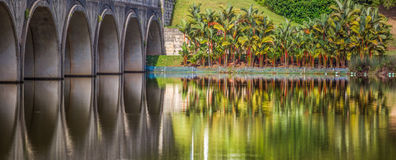 Zmierzchu most i palma Obrazy Royalty Free