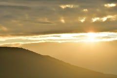 Zmierzchu nieba i lasu natury sceneria w wieczór Zdjęcia Royalty Free
