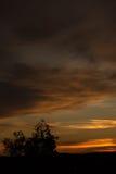 Zmierzchu niebo Fotografia Stock