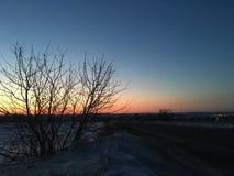 Zmierzchu niebo w polu z różnymi kolorami Obraz Royalty Free