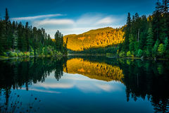 Zmierzchu odbicia Toketee Umpqua Jeziorna rzeka Oregon Obrazy Stock