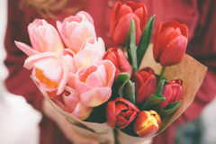 zmieszać bukietów gradientów cyfrowy tulipanu ilustracji Fotografia Royalty Free
