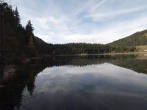 ZminiÄ  ko jezioro Zdjęcie Royalty Free
