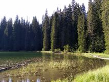 Zminje湖 库存照片