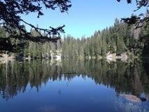 Zminje jezero forest reflection. Forest reflection in Zminje jezero,Durmitor National Park Royalty Free Stock Photo