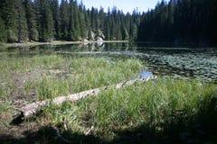 Zminje lake Stock Image