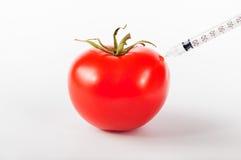 Zmodyfikowany pomidor Zdjęcie Stock
