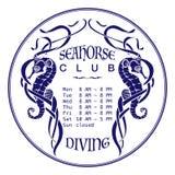 Zmrok - błękitni seahorses na bielu Zdjęcia Stock