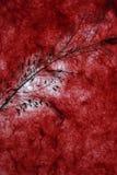 Zmrok - czerwony naturalny papierowy tło Zdjęcia Royalty Free