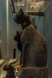 Zmumifikowany Egipski kot zdjęcie royalty free