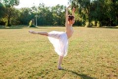 Zmysłowa balerina w naturze fotografia royalty free